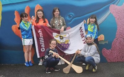 All-Ireland Camogie Final
